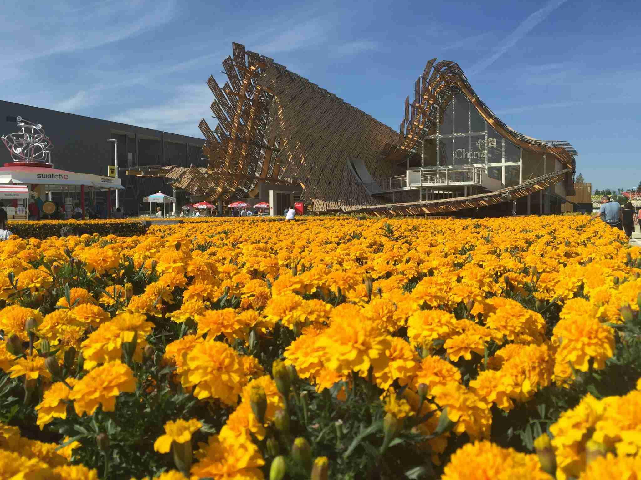 Expo 2015, top 5 padiglioni più belli